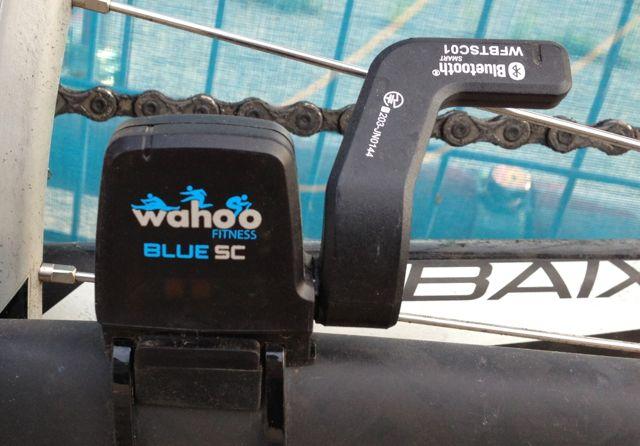 wahoo_blue_cs2